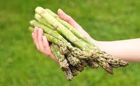 Szparagi są źródłem wielu witamin i substancji odżywczych