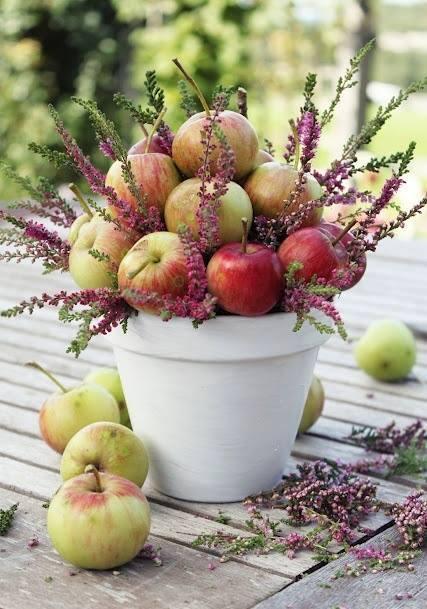 Bukiet z jabłek i wrzosowych gałązek