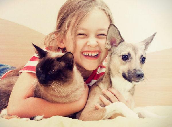 Zwierzątko dla dziecka