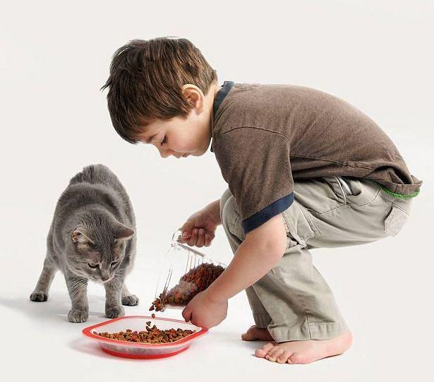 Dziecko uczy się przy zwierzęciu odpowiedzialności