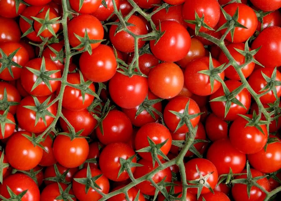 Pomidory typu cherry