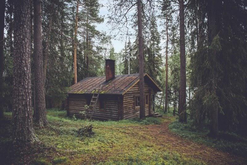 drewniana chatka w lesie